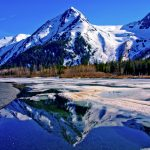 Learn Many Things About Alaska